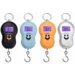 Portable Hanging Digital Weight Scale 45kg