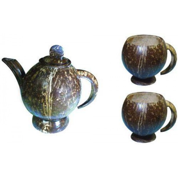 Coconut Shell Teapot set